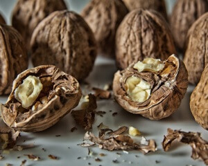 Орехи улучшают работу мозга