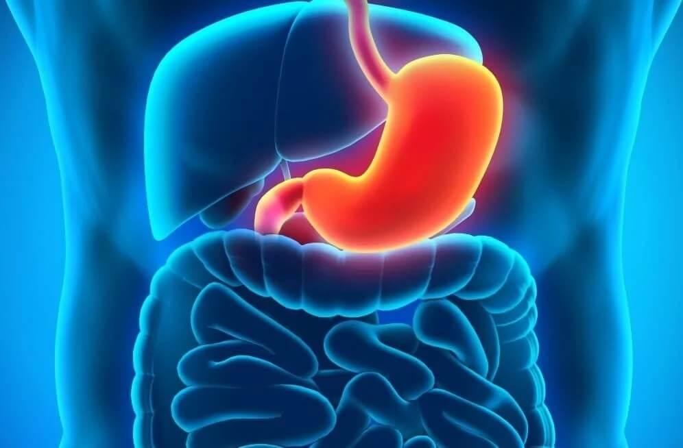 Лечение желудка лекарствами