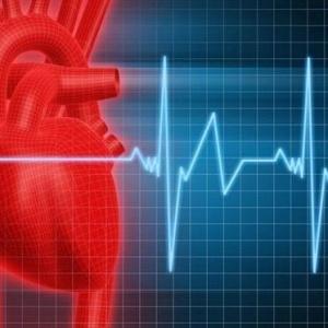 Синусовый ритм, что это? Основной показатель работы сердца