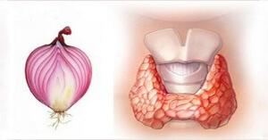Лук для щитовидной железы