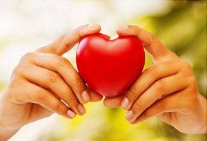 Нормальное сердцебиение во время беременности