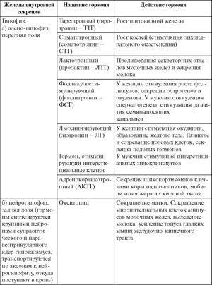 Часть таблицы эндокринных желез