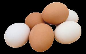 Тепло вареных яиц