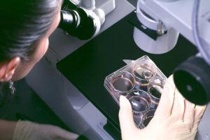 Исследование кислотности