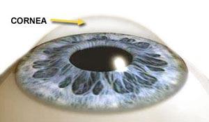 От чего происходит эрозия роговицы глаза: последствия, симптомы, лечение, методы диагностики