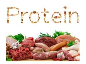 Где содержатся белки, в каких продуктах, таблица содержания белков, функции и правила приема