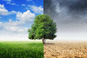 Метеозависимость от погоды
