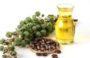 Свойства касторового масла