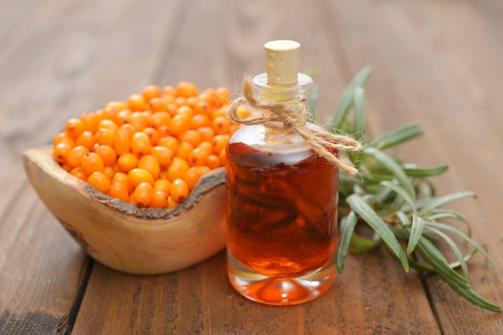 Масло облепихи: лечебные свойства, показания и противопоказания, что важно знать о составе облепихового масла