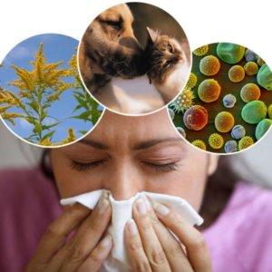 Как выбрать лекарство против аллергии: советы
