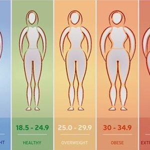 Как рассчитать индекс массы тела: формула по определенным параметрам