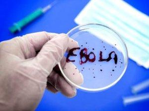 Последствия Эболы