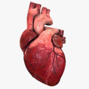 Помощь сердцу