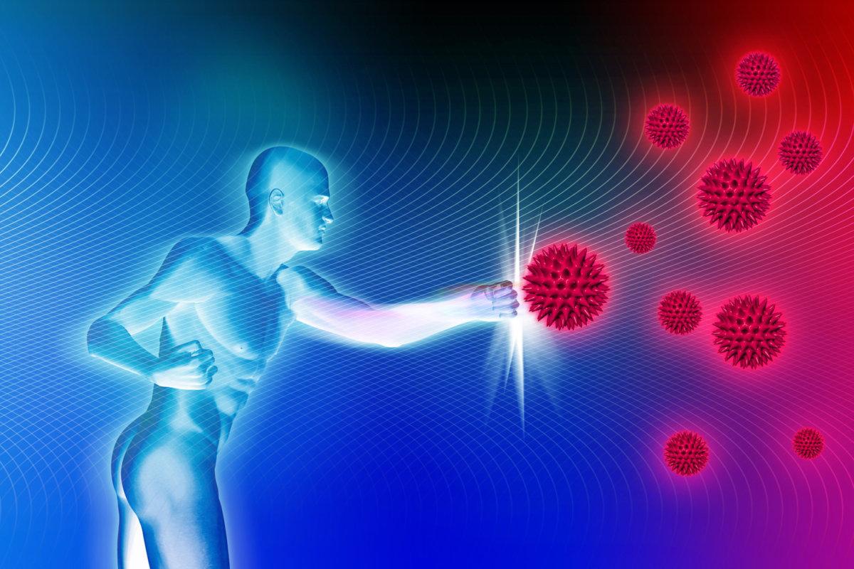 Медь помогает иммунитету человека