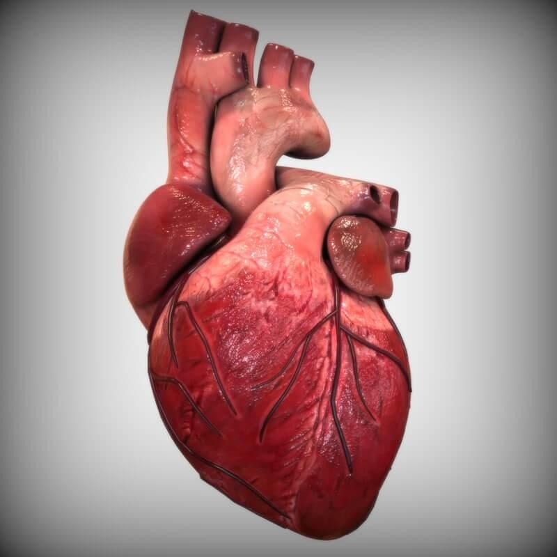 Восстановление работы сердца