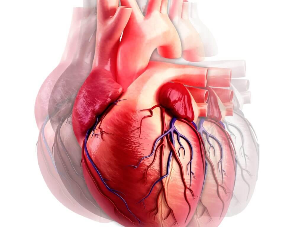 Устранение сердечных патологий
