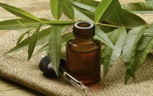 Полоскание маслом чайного дерева