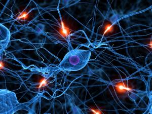 Невропатия является болезнью ПНС