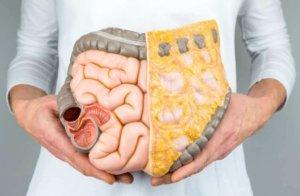 Развитие кишечных проблем