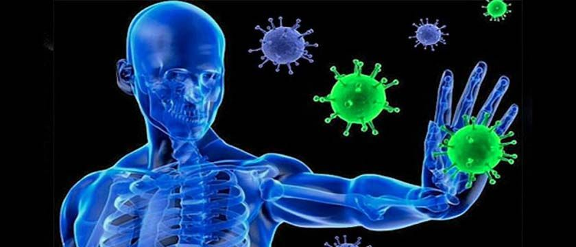 Следует повышать иммунитет