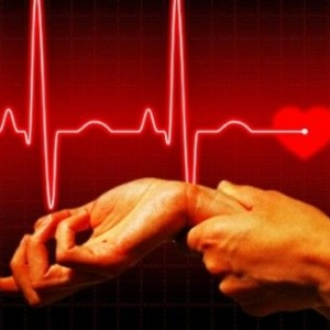 Норма пульса у человека: держим здоровый ритм
