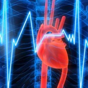 Как делать непрямой массаж сердца: экстренное реанимирование при остановке сердца