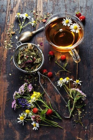 Травяной чай против кашля