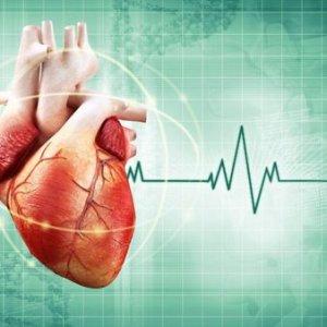 Что делать, если сильное сердцебиение: лечение традиционными и народными методами