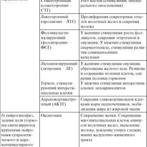 Таблица эндокринных желез в понимании гормонального статуса организма