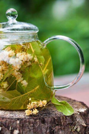 Липовый чай: свойства