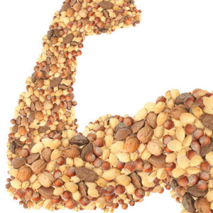 Продукты, содержащие только белок. Роль белка в поддержании жизнедеятельности организма человека