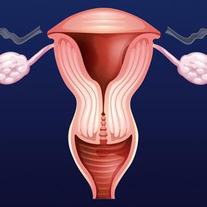 Можно ли забеременеть без маточных труб: функции в женском организме и патологии, влияющие на их работу