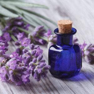 Лавандовое масло для лица: применение для ухода за кожей