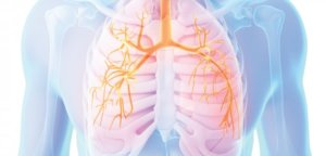 AMNT Nov14 CNE 750x300 e1493916704317 - Quais são os remédios para falta de ar, insuficiência cardíaca