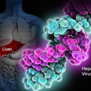 Лечение гепатита C народными средствами: отзывы о рецептах