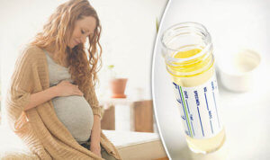 Моча беременной