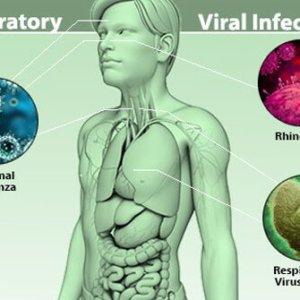 Чем лечить вирусную инфекцию: первая помощь, виды и причины