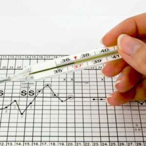 Как проверить беременность с помощью градусника: измерение базальной температуры