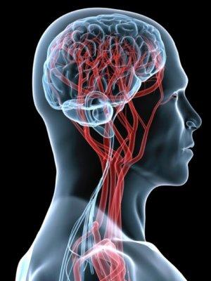 Черепно-мозговые травмы