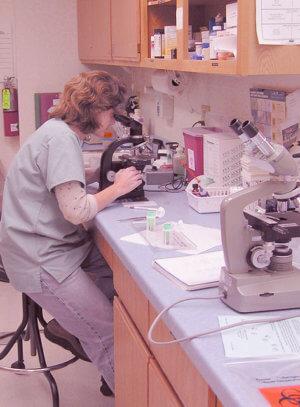 Изучение лабораторных анализов