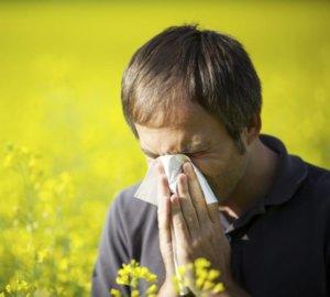 Причина в аллергии
