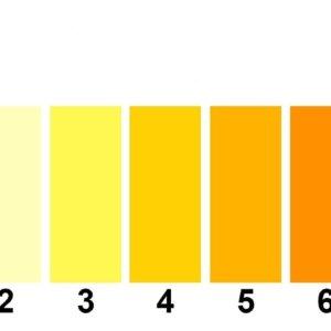 Моча ярко-оранжевого цвета — причины, способы нормализации
