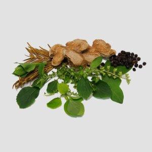 Сиропы от кашля на травах – описание препаратов, отзывы потребителей