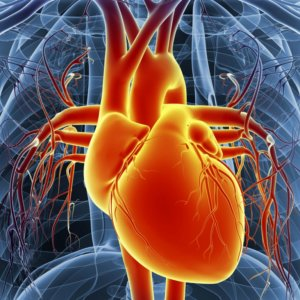 Серьезная сердечная патология