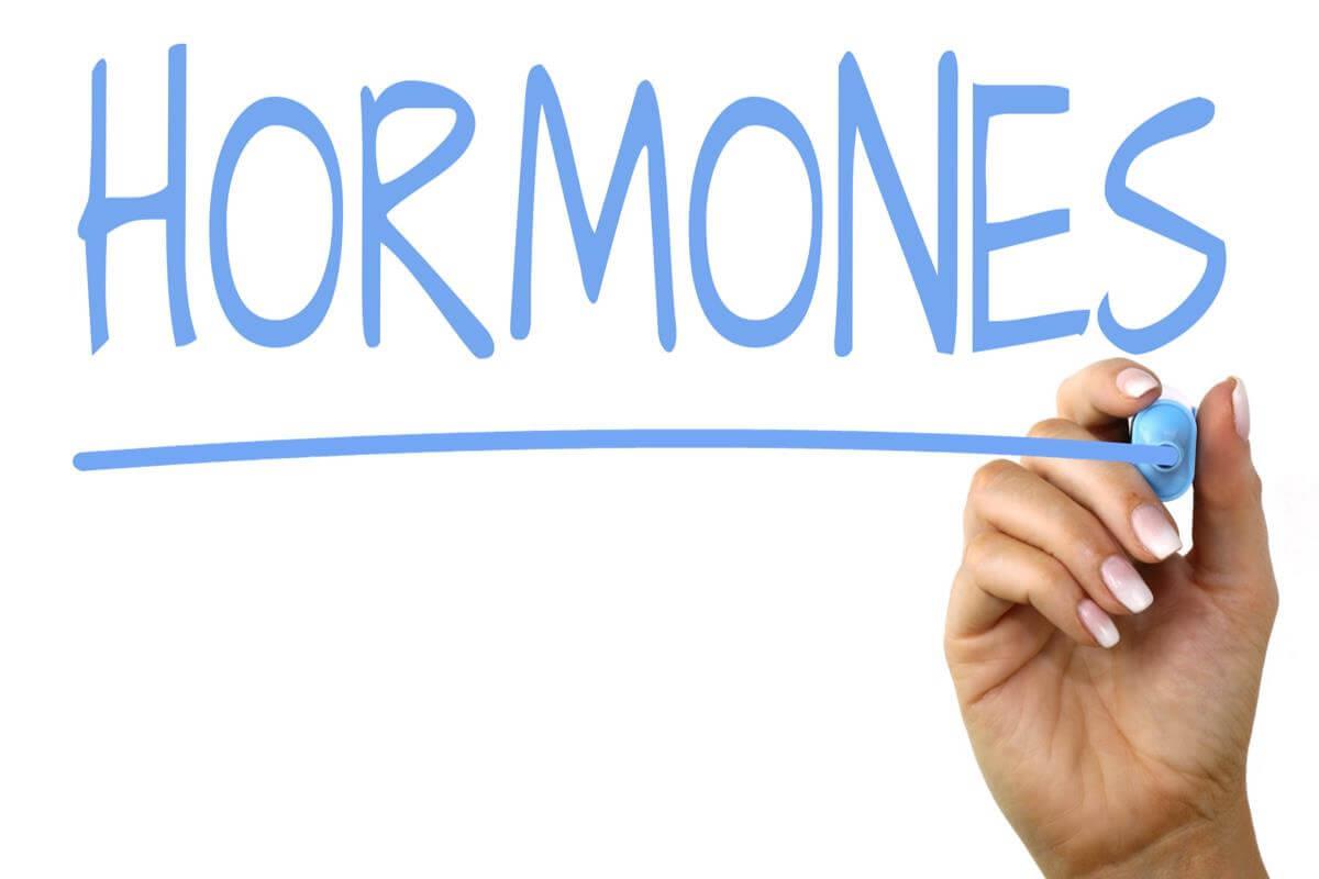 Работа гормонов