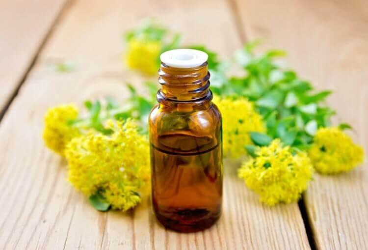 Масло какого растения эффективнее