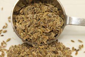 Использование семян укропа
