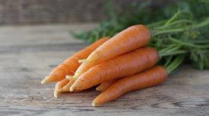 Лечебные свойства моркови