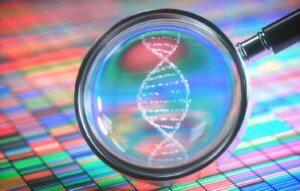 Генетическая патология