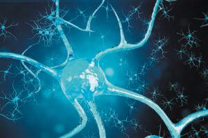 Развитие эпилепсии